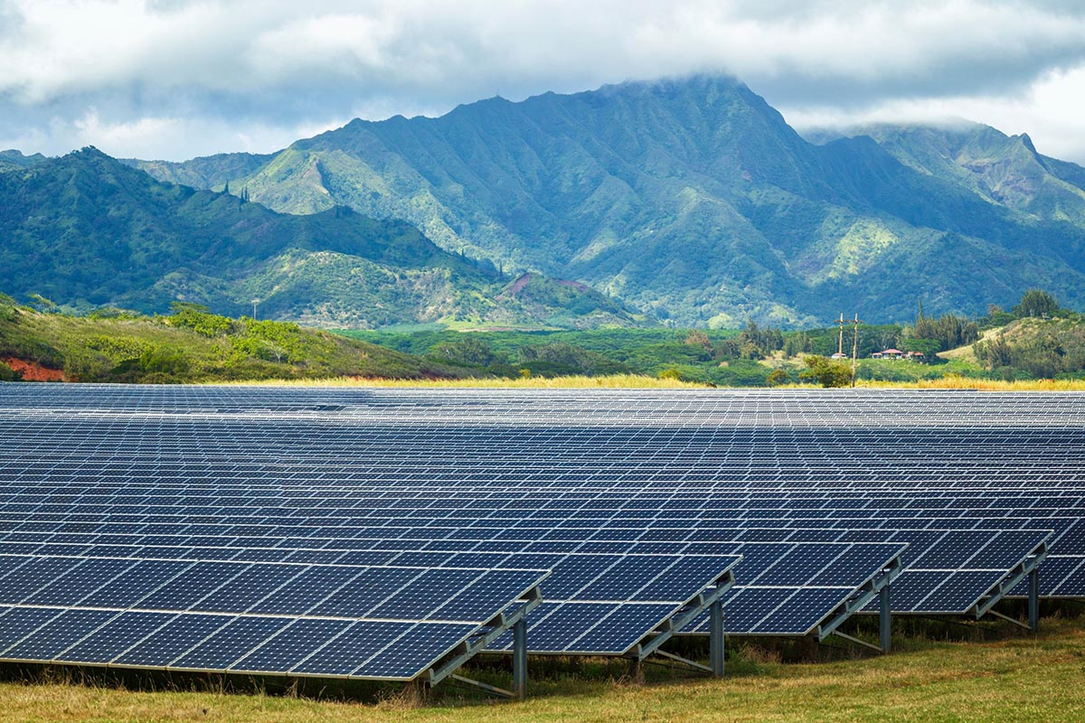 What to Expect on Renewable Energy Beyond 2021